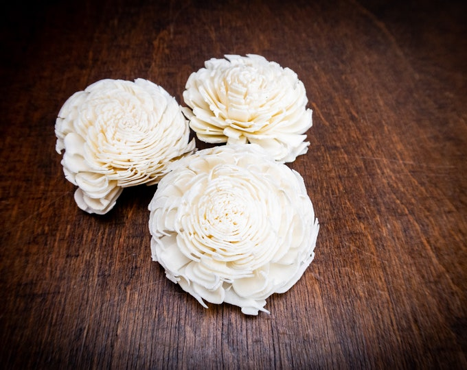 "Wholesale bulk Sola Flowers 100pcs diy bouquet Wedding decor white ivory chorky shape floral supply natural table decor rustic 6cm 2 23⁄64"""