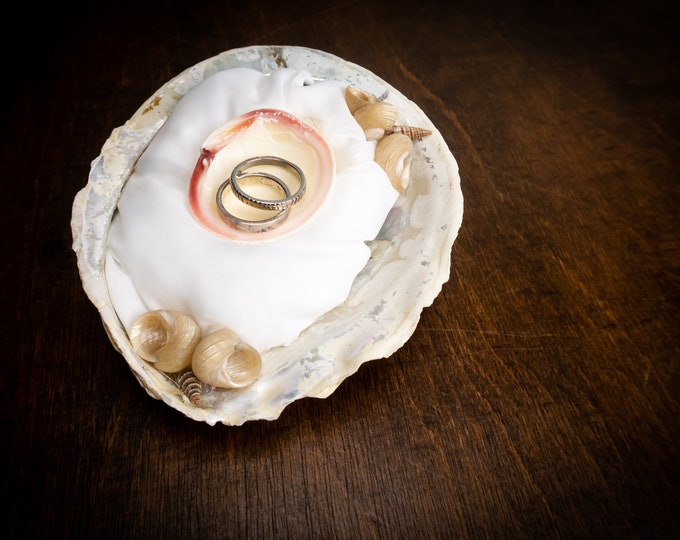 Real big shell wedding ring bearer, marine destination beach tropical wedding, sea shell decor