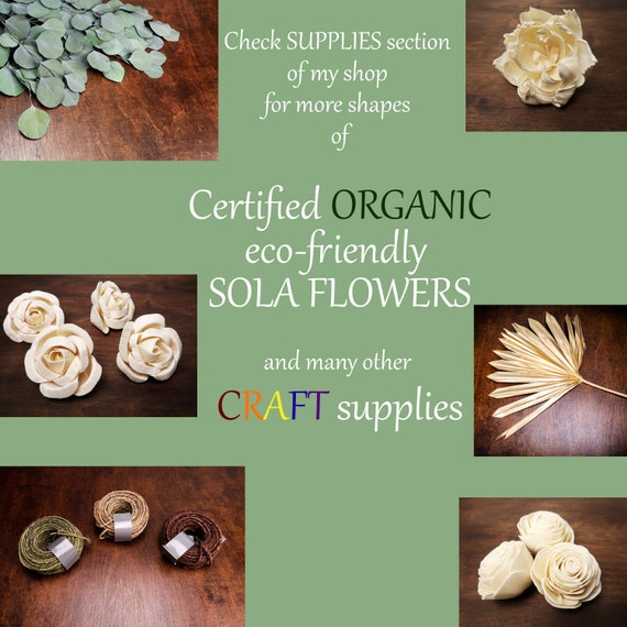 ivory wooden flowers wholesale Small Sola Flowers 4cm 1,5 natural table decor confetti florist supply diy wedding floral decorations