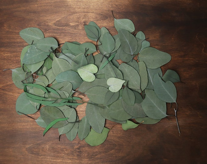Preserved eucalyptus leaves mix craft supply greenery DIY floral wedding hair accessory real plant boho wedding sage green