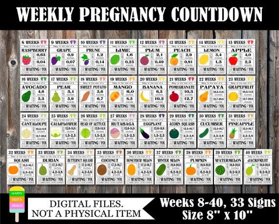 PRINTABLE Pregnancy Countdown Signs-Weekly Pregnancy