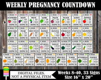 PRINTABLE Pregnancy Countdown Signs-Weekly Pregnancy Countdown-Pregnancy Photo Prop-Countdown To Baby-Baby Size Signs-33 Signs/Size 16x20
