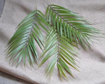 palm leaves etsy