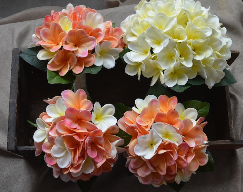 Ivory White Plumerias Pink Coral Plumerias Ivory Coral Wedding Bouquets Real Touch Flowers Bridal Bouquets