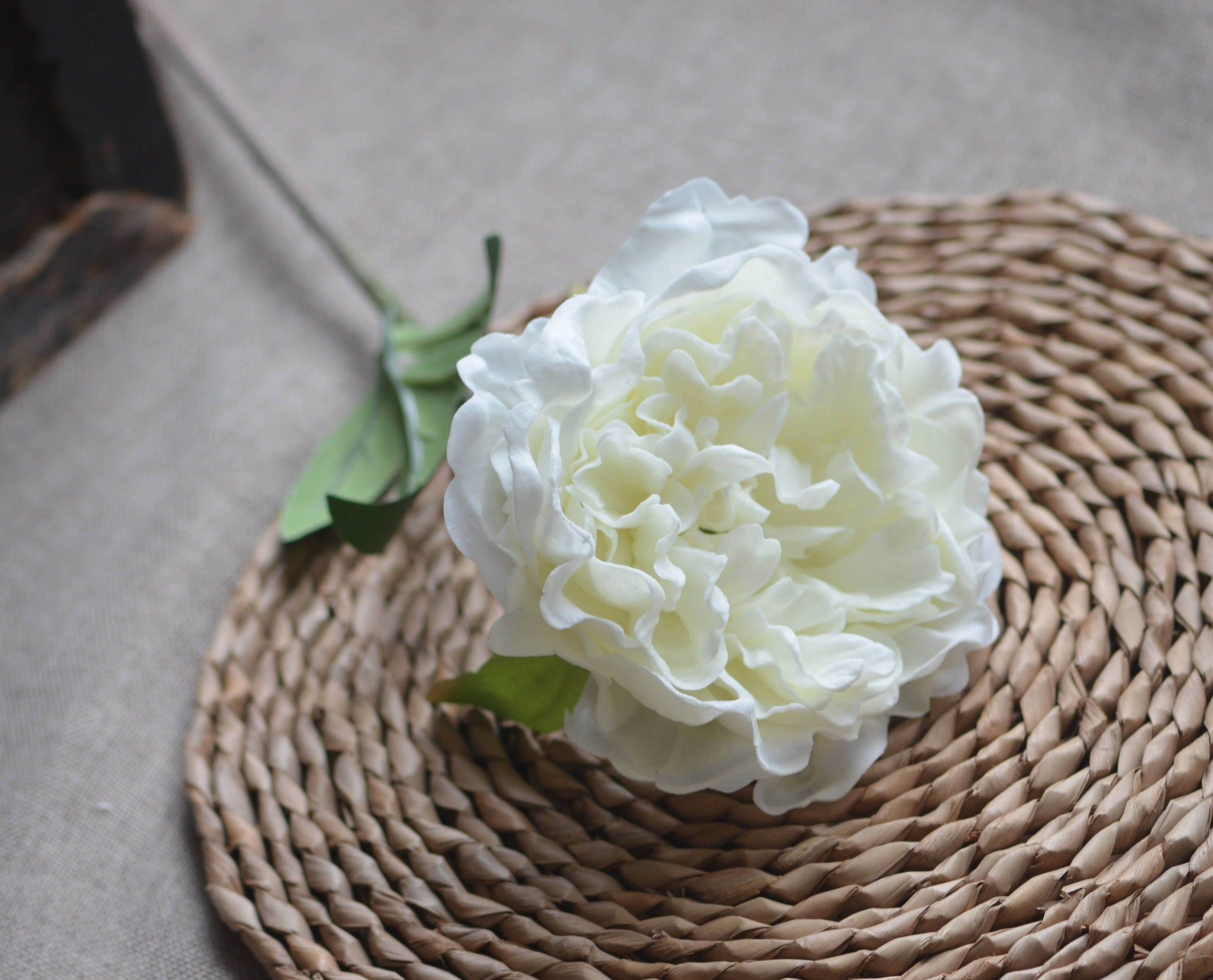 White Ivory Peony Flowers Real Touch Flowers Artificial Open Etsy