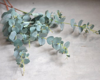 Dusty Green Eucalyptus Artificial Eucalyptus Leaves Vintage Dusty Greenery Centerpieces