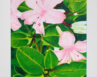 "Pink Hawaiian Flowers Original Art Print - ""ʻĀkala"""