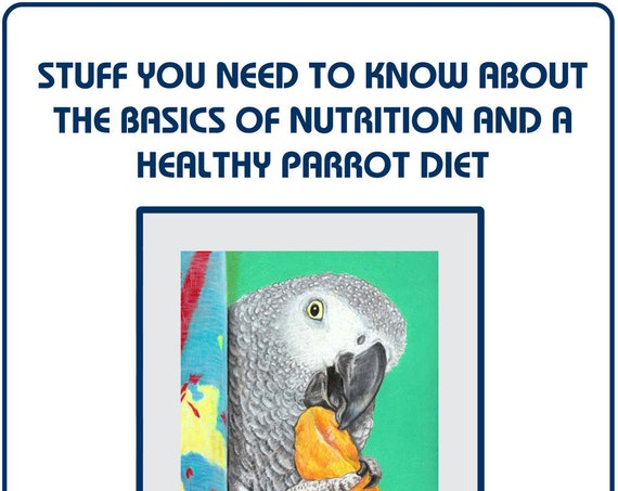 Stuff you Need to Know About The Basics of Nutrition and a Healthy Companion Parrot Diet 31-page digital download by Sally Blanchard