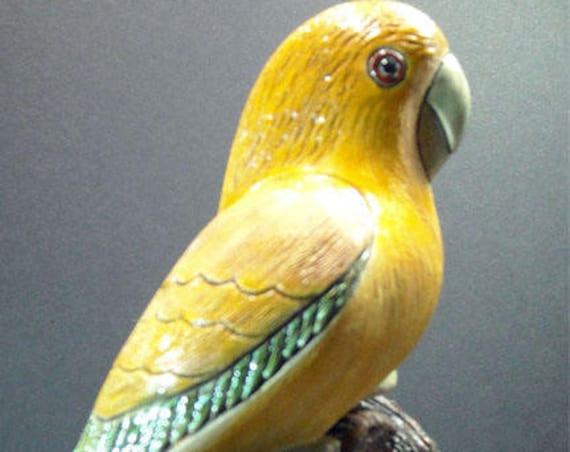 Very Rare Prototype Artesania Rinconada Golden Conure or Queen of Bavaria Conure 1 of only 12 made