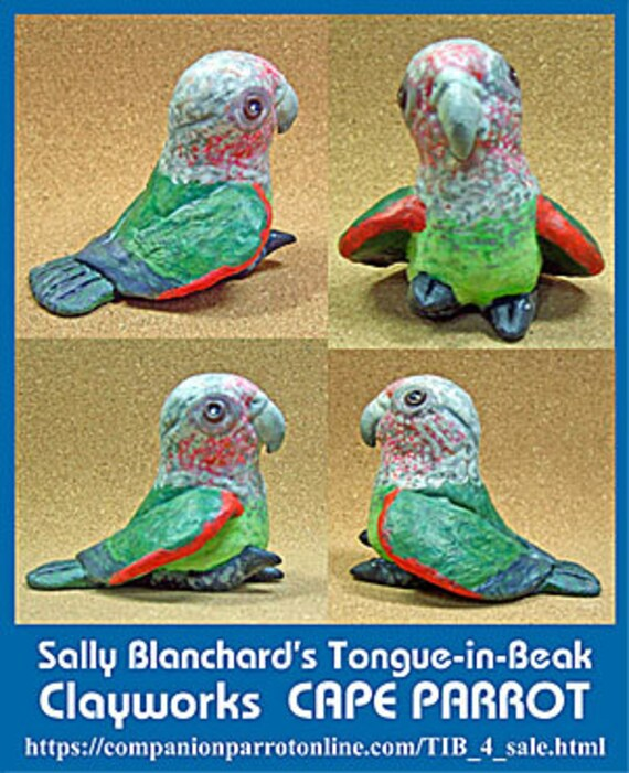CAPE PARROT Tongue-in-Beak Mini-gem by Sally Blanchard