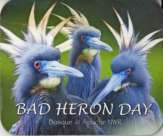 Computer Mouse Pad Bad Heron Day Bosque del Apache NWR