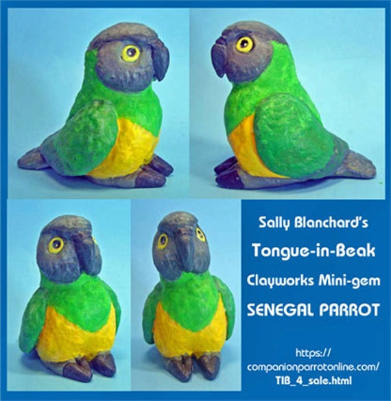SENEGAL PARROT Tongue-in-Beak Mini-gem by Sally Blanchard