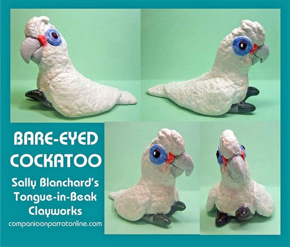 BARE-EYED COCKATOO Tongue-in-Beak Clayworks by Sally Blanchard