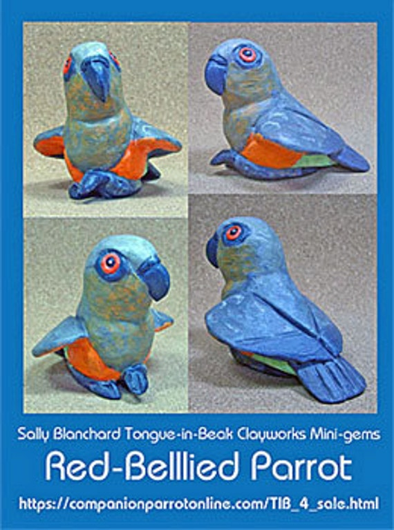 RED-BELLIED PARROT Tongue-in-Beak Mini-gem by Sally Blanchard