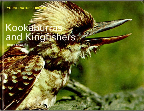 Kookaburras and Kingfishers Young Nature Library by Bruce Edwards