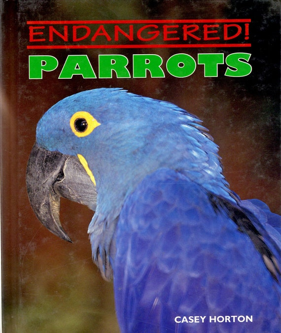 Endangered Parrots by Casey Horton