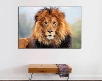 African Lion Canvas Print, Interior Design, Lion Print, Lion Art Room  Decoration, Photo Gift, Lion Wall Art, Wall Art, Lion Canvas Print.