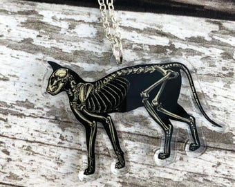 Cat Skeleton, Cat Necklace, Skeleton Necklace, Cat Anatomy, Halloween Jewelry, Halloween Necklace, Science Necklace