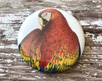 Parrot Pocket Mirror, Macaw Pocket Mirror, Compact Mirror, Handbag Mirror, Handbag Compact, Hand Mirror, Makeup Mirror, Parrot Mirror