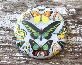 Butterfly Pocket Mirror, Pocket Mirror, Compact Mirror, Handbag Mirror, Handbag Compact, Hand Mirror, Makeup Mirror, Butterfly Mirror
