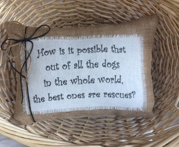 Dog rescue quote pillow~New rescue dog saying~Dog sayings~Rescued dogs~Gift  for new rescued dog~gift for pet owner~Shelter dog adoption