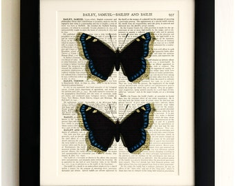 FRAMED ART PRINT on old antique book page - Two Butterflies, Vintage Upcycled Wall Art Print Encyclopaedia Dictionary Page
