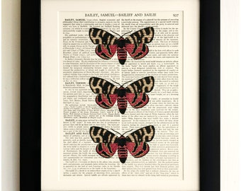 FRAMED ART PRINT on old antique book page - Three Butterflies, Vintage Upcycled Wall Art Print Encyclopaedia Dictionary Page
