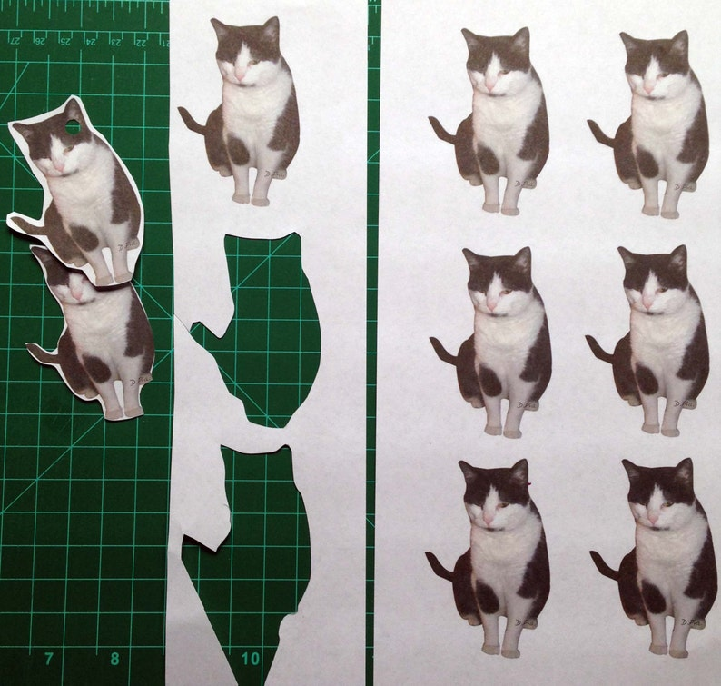 original artwork Annoyed cat Instant Download Black and White Cat ornaments or gift tagsset of 9 D.Pia Make them Custom