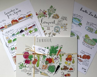 """The """"Green Pack"""" - Seasonal Fruit and Vegetable Calendar A5 - Compost Card - Conservation Card - Zero Waste Recipe Card"""