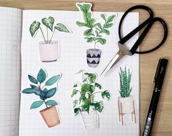 Plant Art Vinyl Sticker Set - Cute Plant Lover, Botanist, Watercolour Illustration Handcut Single Stickers - Monstera, Fig, Arrowhead Leaf