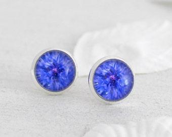 Cornflower Earrings - Stud Earrings - Blue Earrings - Blue Cornflowers - Flower Studs - Flower Earrings - Silver Stud Earrings - Bridesmaid