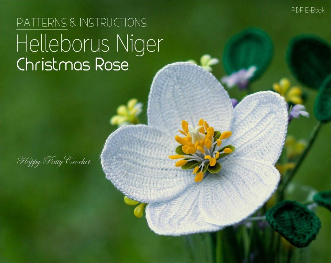 Crochet Christmas Rose Pattern Helleborus Niger Flower