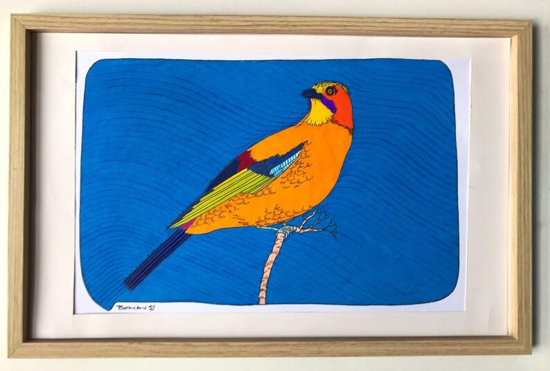 A Colourful Jay Bird 2021 image 0