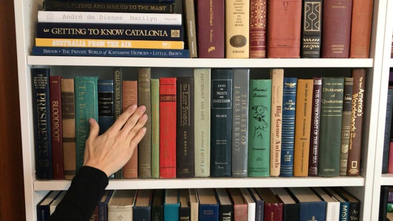 Secret Book Panel  Hidden Storage for your Bookshelf with image 0