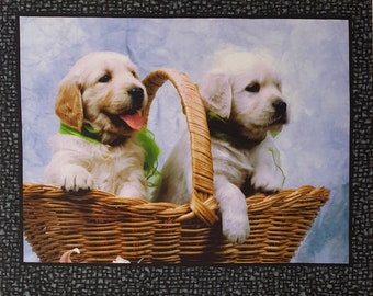 Somebody to Love puppies -- Hexified Panel Quilt Kit