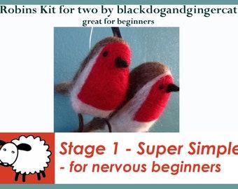 Robin needle felting kit - make 2 robins - great beginners kit.
