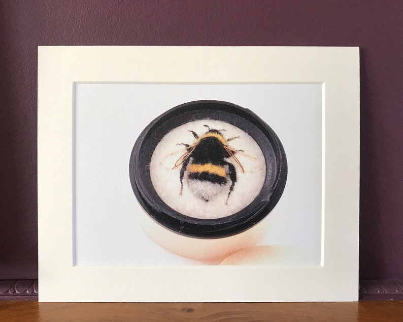 Bee Art Print: Collection 2  Bumblebees Solitary Bees  image 0
