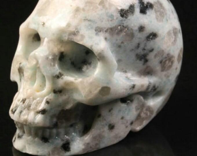 Kiwi Jasper Carved Skull  #076