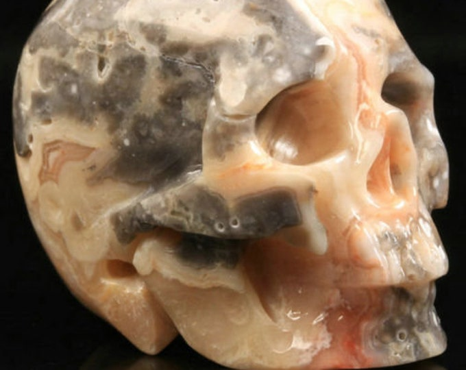 Crazy Lace Agate Carved Skull  #007