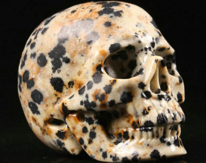 Dalmatian Jasper Carved Skull  #047