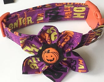 Orange and Purple Halloween Collar with Matching Flower for Girl Dogs and Cats