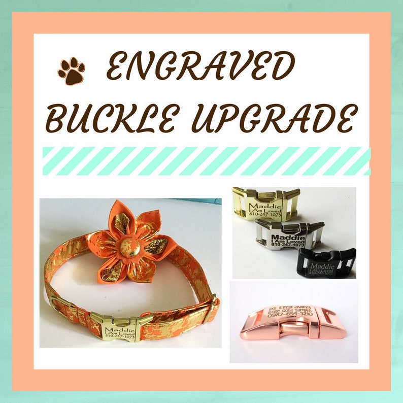 Engraved Buckle Hardware Upgrade for Dogs-Silver Black Gold image 1