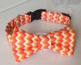 Orange & Yellow Chevron Bow Tie Dog and Cat Collar