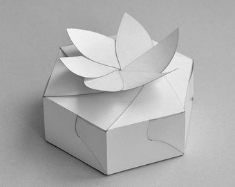 Template Of Box Hexagonal Carton With Board And Petals