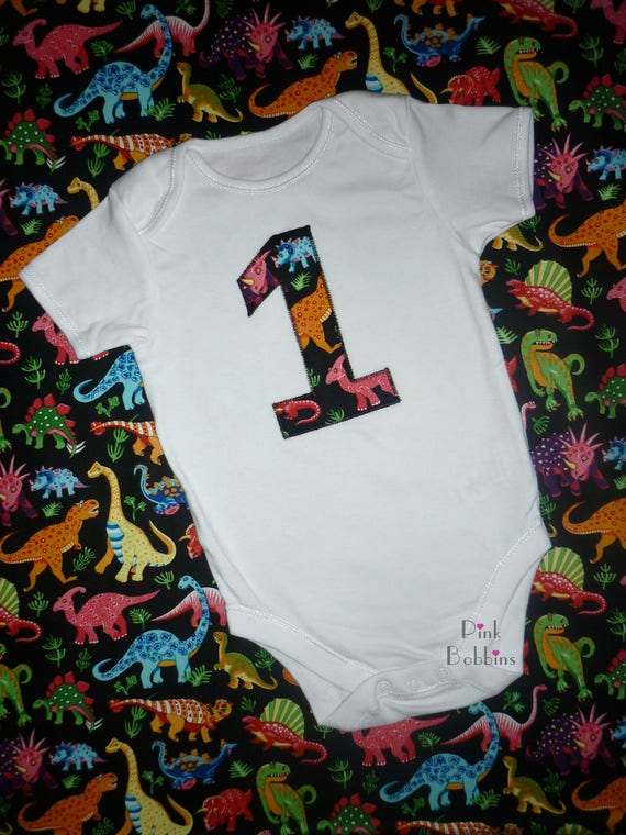 Dinosaur 1st Birthday Outfit Party Boys