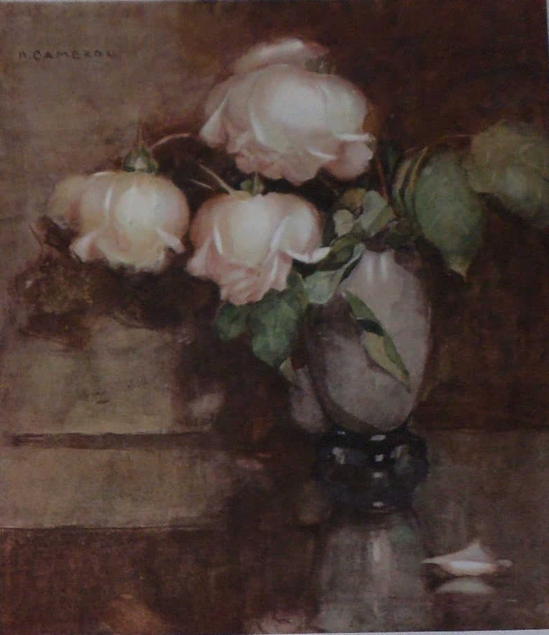 Antique Floral Print Flower Art A Study of White Roses in a Vase by Katherine Cameron from 1906 Botany Print -Matted -Ready to Frame