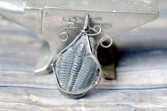 Trilobite Wire Wrap ~ .925 Sterling Silver Wire