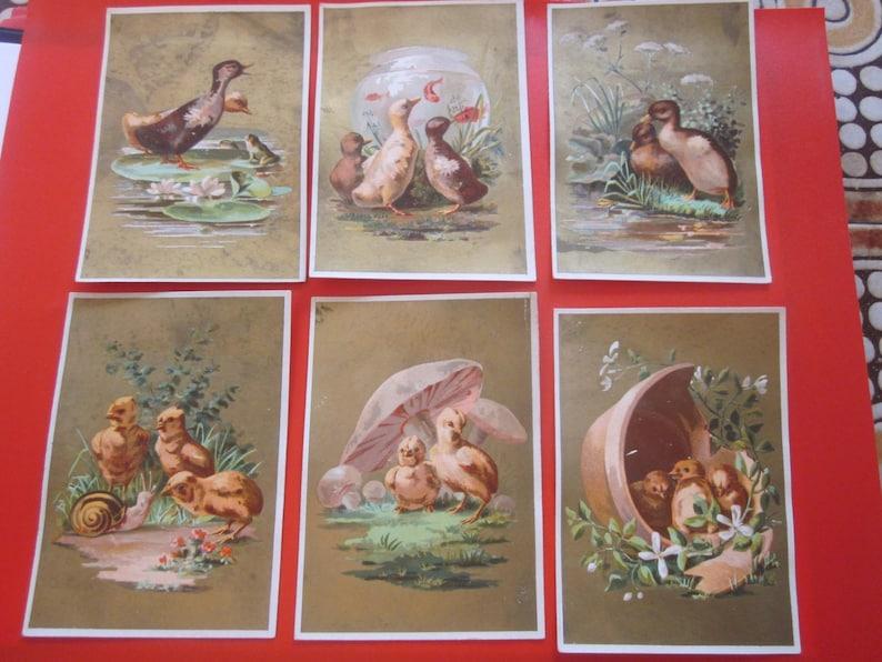 5 antique french advertising chromo 1885