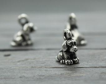 Dog charms  cab670371372