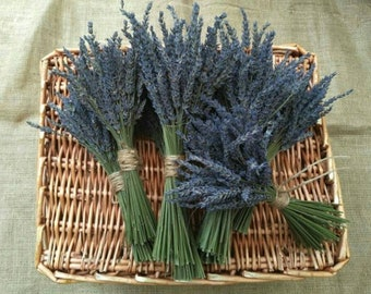 Beautiful Hand tied bunch of lavender stems wedding decor lavender bunches